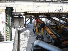 内蒙古玉米烘干作业机械化生产线图